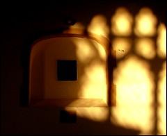 cast a warm light