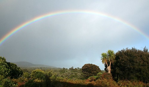 Catlins rainbow