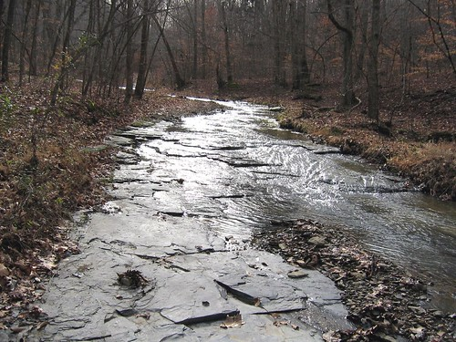 New Albany shale creekbed