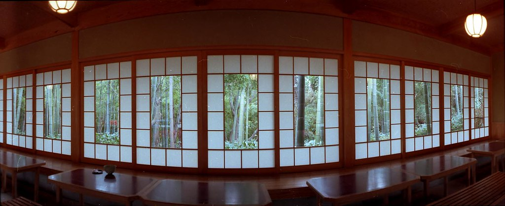 bamboo,window,green tea.