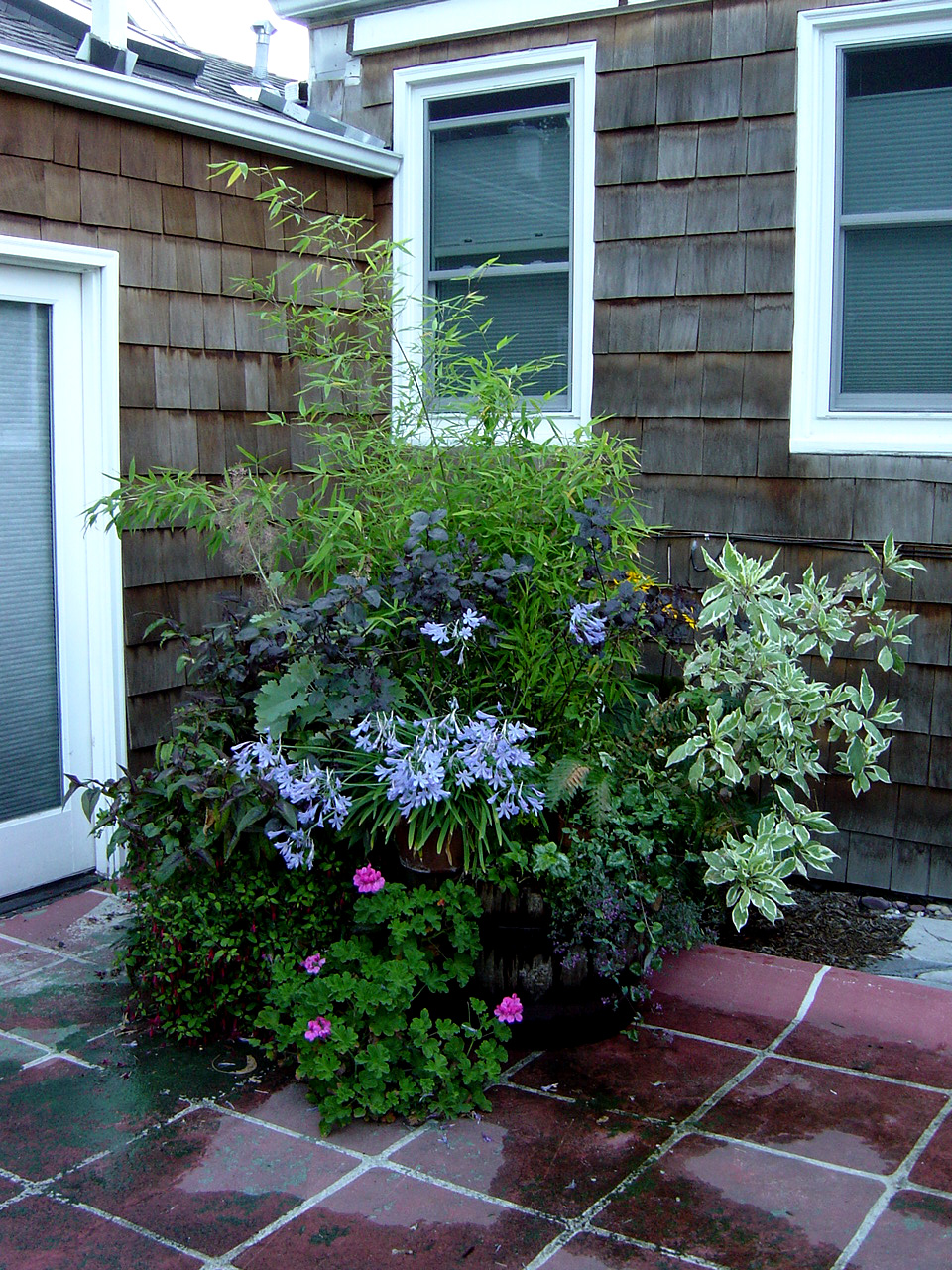 Container Gardening | Flickr - Photo Sharing!