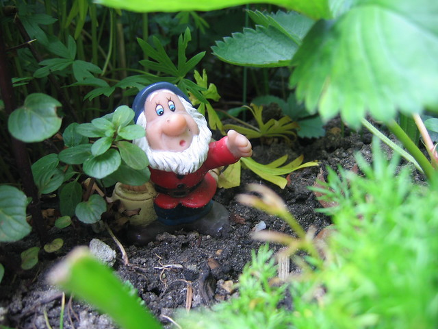 garden gnome dressed up as dwarf