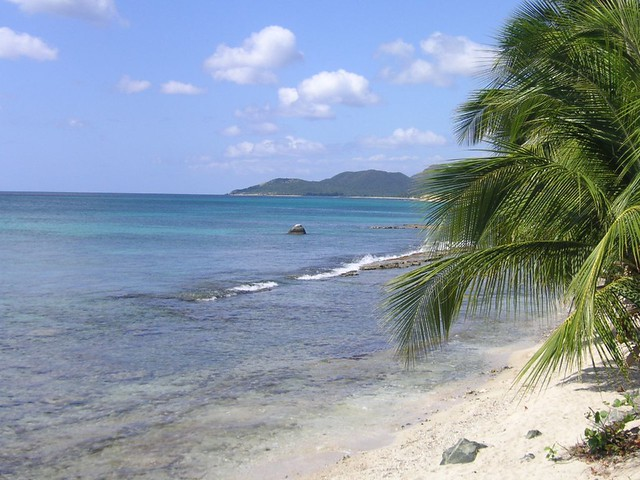 Things to do in Vieques, Puerto Rico – 7 Days in Vieques