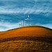 Altamont Pass Wind Farm by razorbern