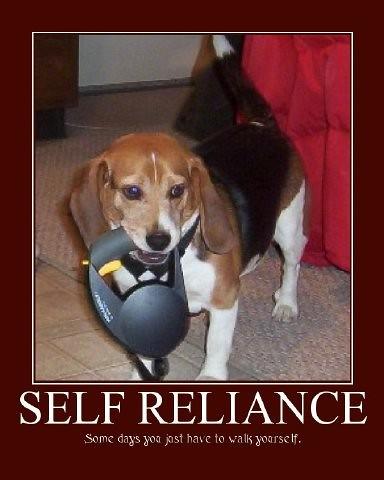 LDS - Self Reliability