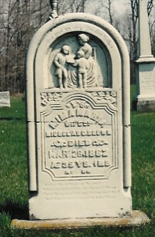 Gravestone for Mina Maria (BACKHOUSE) BROWN