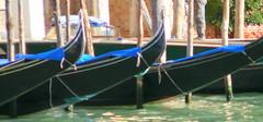 sailboat(0.0), watercraft rowing(0.0), caravel(0.0), viking ships(0.0), vehicle(1.0), gondola(1.0), watercraft(1.0), boat(1.0),