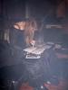 27-11-2005_Dominion_010