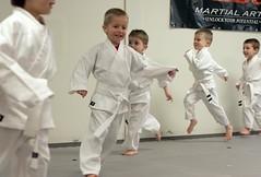 hapkido, individual sports, contact sport, sports, tang soo do, combat sport, martial arts, karate, taekkyeon, japanese martial arts, shorinji kempo,