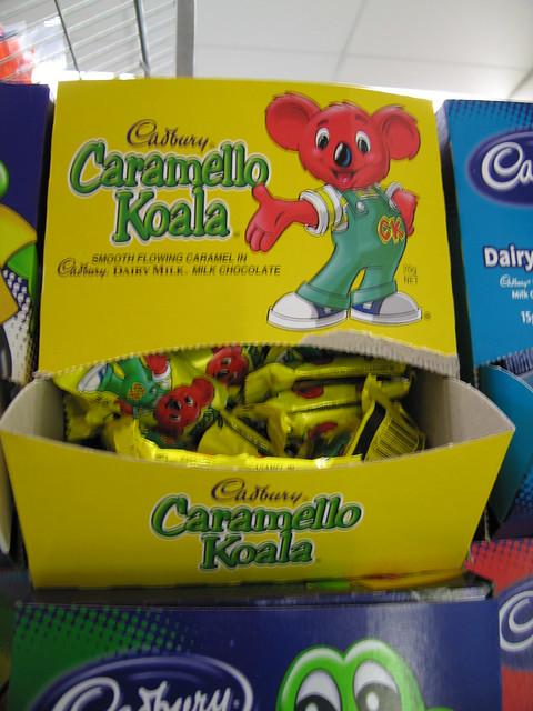caramello koala flickr photo sharing