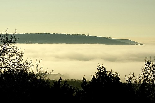 fog in the Chilterns