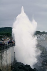 water, vehicle, body of water, geyser, wave,