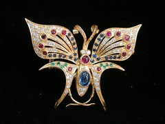 butterfly, jewellery, invertebrate, insect, brooch,