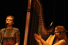 classical music, string instrument, clãrsach, musician, music, harp, performance art, string instrument,