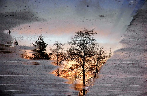morning reflection oneaday sunrise munich geotagged puddle january reflectionsof 2007 explored geo:lat=48042592 geo:lon=11656494