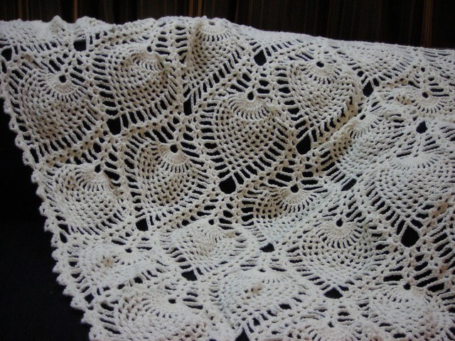 """THAT CROCHET GUY!!"": Pineapple Mesh Shawl-PDF Pattern Only"