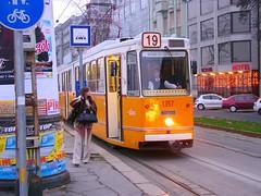 tram no 19