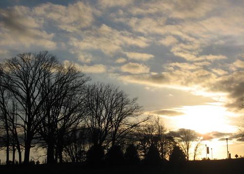 sunset landscape sas