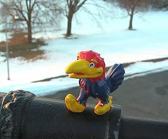 Mini Jayhawk, Feb 2004