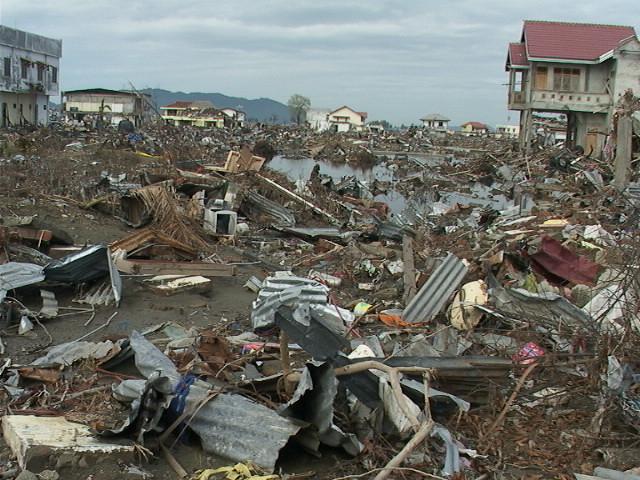 Essay tsunami disaster 2004
