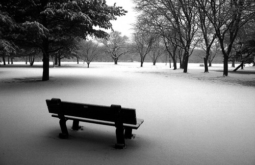Winter's Silence... Listen - you can hear it....
