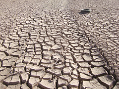 natural disaster, soil, drought, line, disaster,
