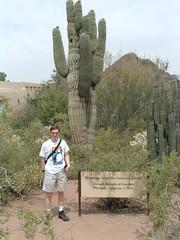 Desert Botanical Garden 15