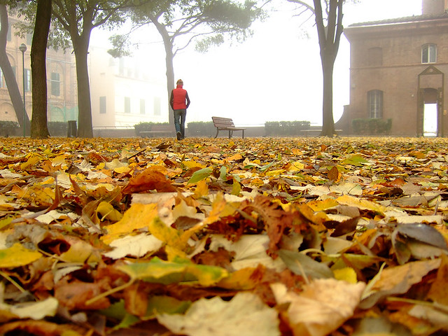Foggy November morning in Siena from Flickr via Wylio
