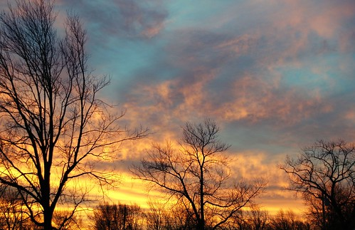 usa tree beautiful weather sunrise wonderful landscape geotagged us newjersey fantastic nikon unitedstates great nj excellent monmouthcounty bayshore impressive 2007 unionbeach d80 neloesteves zip07735 geo:lat=40447167 geo:lon=74162188