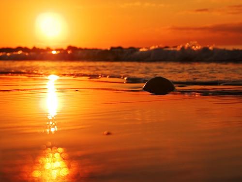 sea beach sunrise cyprus limassol