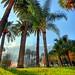 Hawaii ? no Napoli.. by Valpopando