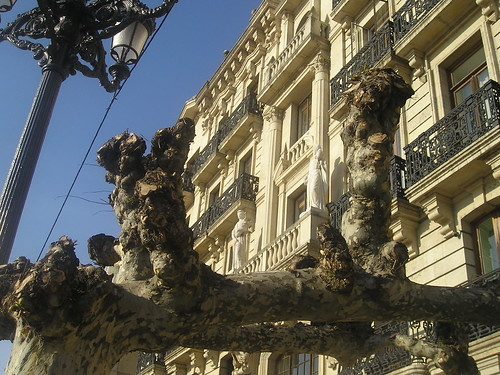 Escultura entre ramas