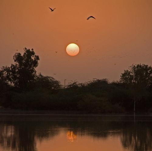 africa 15fav 510fav sunrise mali weeklysurvivor mopti nikond200 nikonstunninggallery barrywilliamsphotography