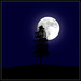 full moon with tree by sharply_done