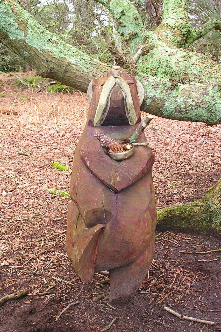 Book 3, Walk 39, Amberley to Pulborough Offerings to the dancing bear, Fittleworth Common, 25 Feb '07.