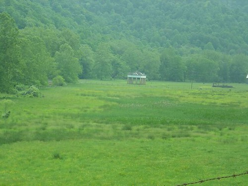 Blue Sulphur Springs from a distance