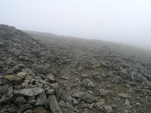 A shrouded path