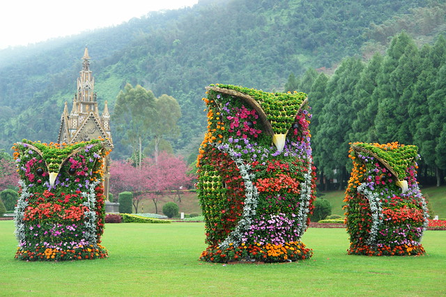 Flower owl in Nantou County, Taiwan by Ernesto JT