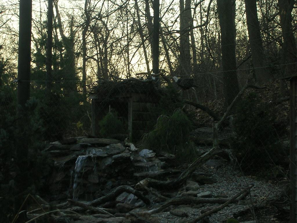 Myths And Legends Surrounding Maryland S Haunted Pocomoke