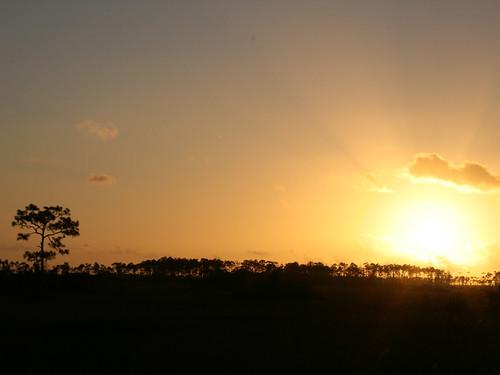 sunset florida everglades evergladesnationalpark