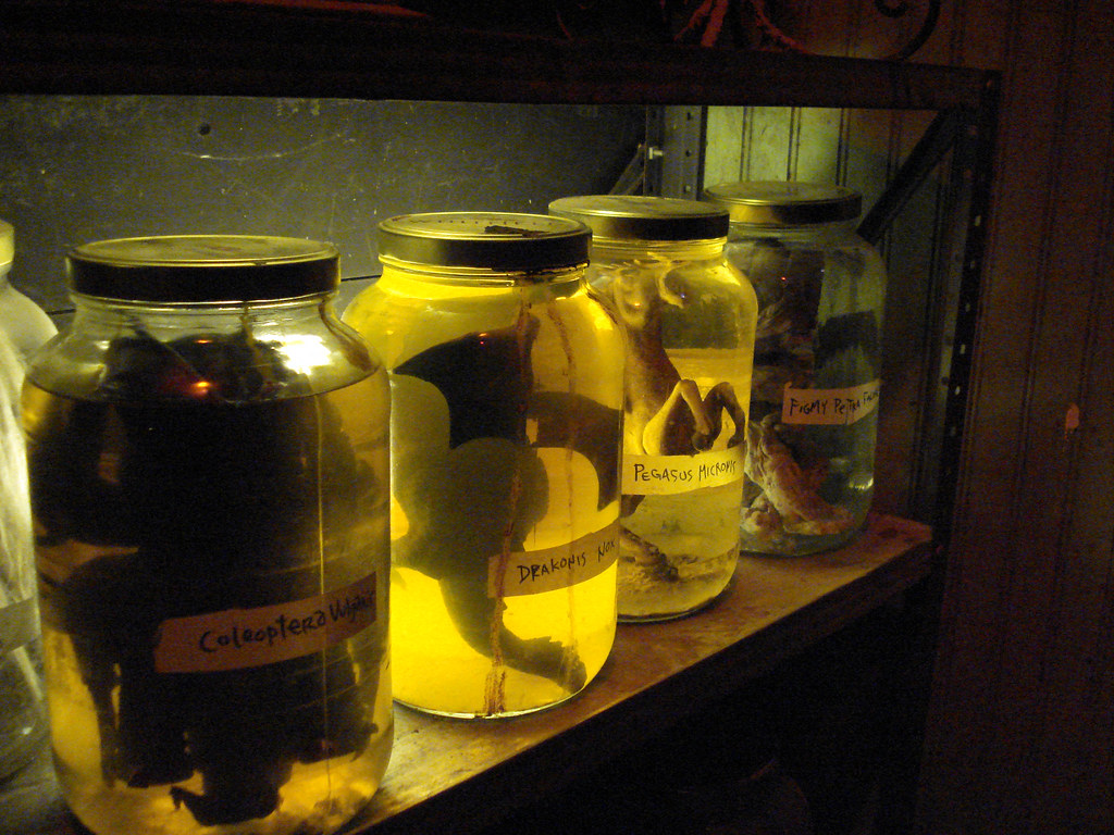 Dead Things In Jars