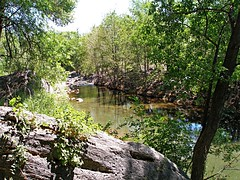 Wet Beaver Creek (2)