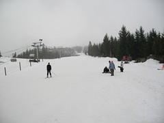 ski in ski out whistler