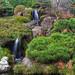 Garden Waterfall by flopper