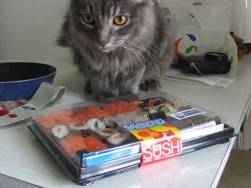 Cat & French Sushi Bento