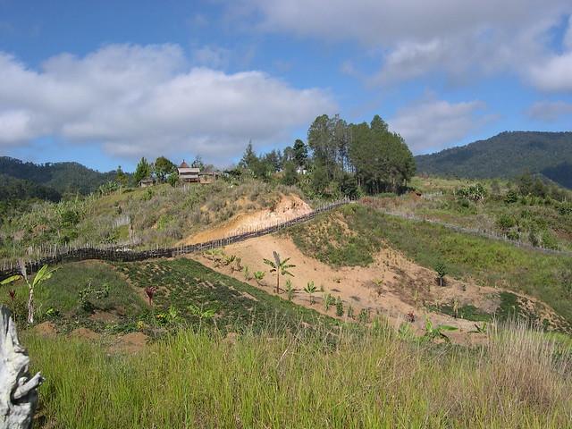 Village landscape eastern highlands papua new guinea