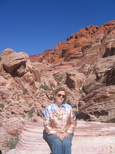 Desert Camouflage / Desert Camo