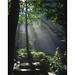 kemmangundi_let there be light by rahul gaur