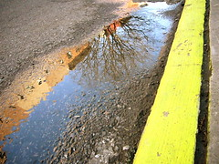 asphalt, puddle, soil, yellow, water, sunlight, road, reflection, road surface, infrastructure,