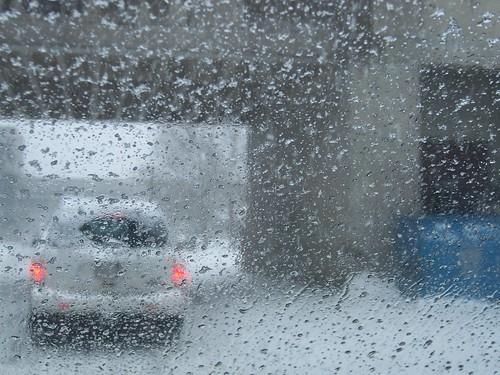 Ice storm by Joseph & Sam's Mom